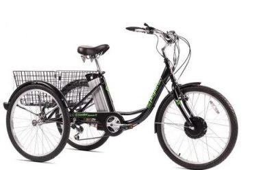 Triciclu Electric Pegas Senior Dinamic